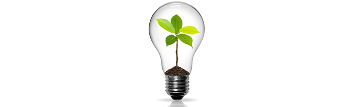 Energy Efficient Electrical Services and Audits