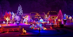'Tis the Season.... Christmas Light Safety